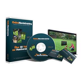 Online Hundetraining Cover Tabelle