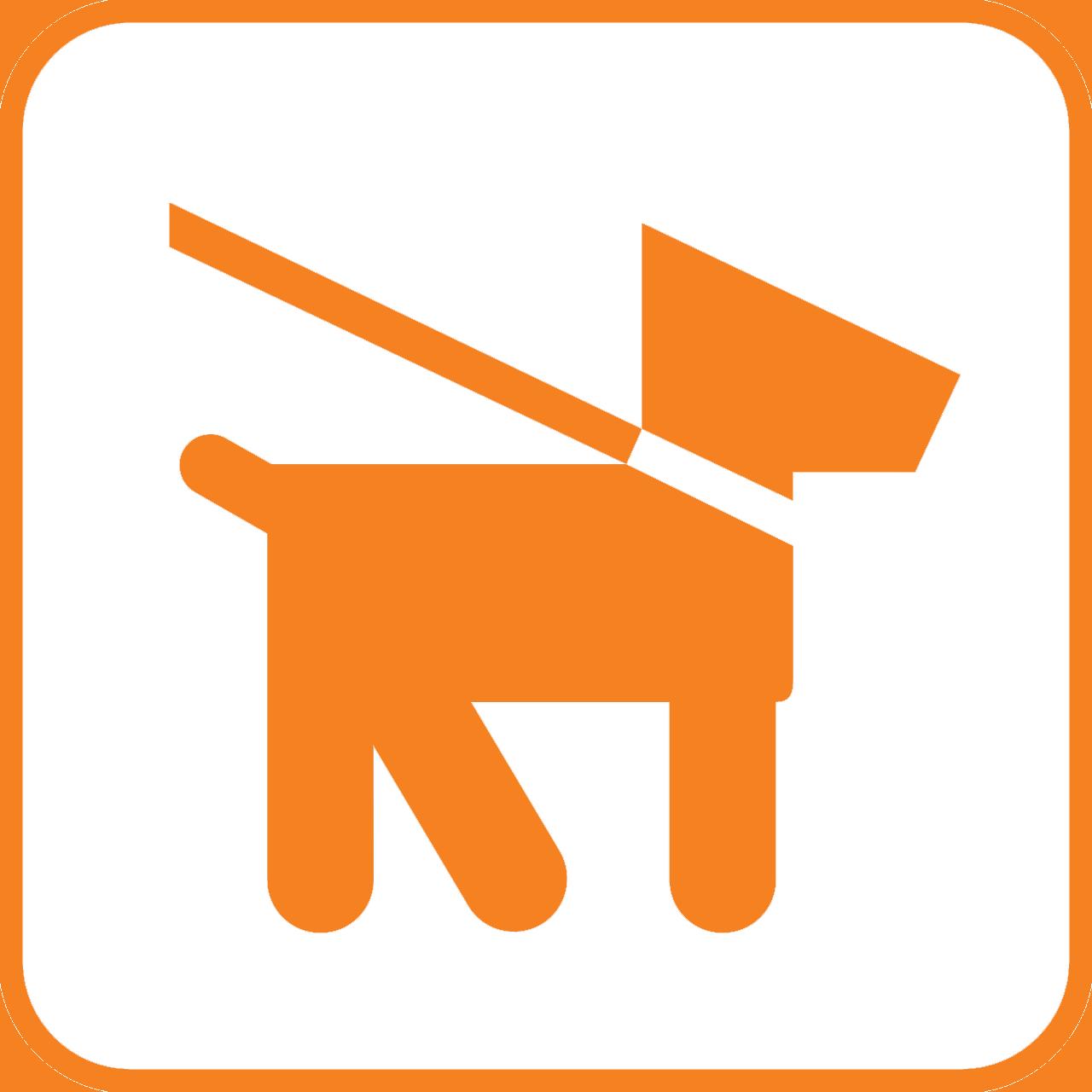 Hundeschule im Internet