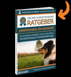 Hundetraining E-Book